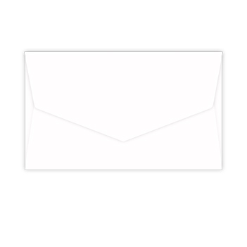 Envelopes Only - 4.5 x 8.5